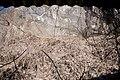 Fornace da calce X - Torrazza di Caslano.jpg