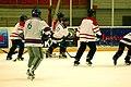 Four-Nation Hockey Tournament 1 (4397140987).jpg