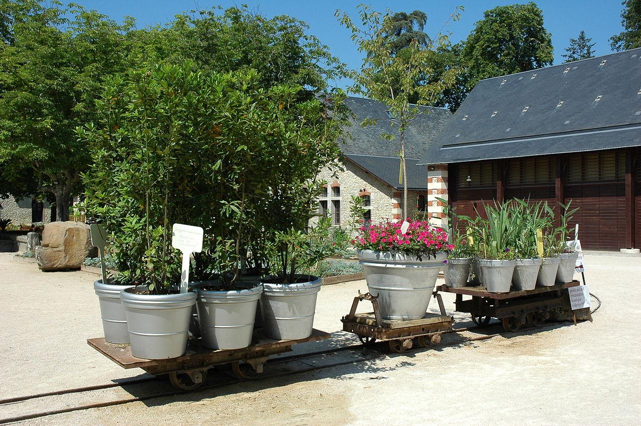 file france loir et cher festival jardins chaumont sur loire wagonnet 01 jpg wikimedia commons. Black Bedroom Furniture Sets. Home Design Ideas