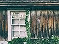 Frankenmuth, United States (Unsplash 9YpZH6mtCXE).jpg