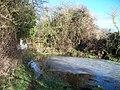 Frozen pond - geograph.org.uk - 1671761.jpg