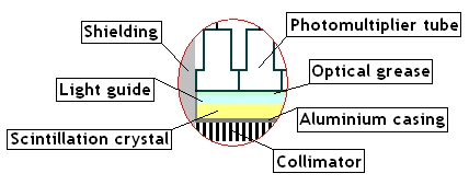 Gamma Camera Cross Section detail