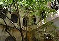Gandia, arbre al claustre del convent de sant Roc.JPG
