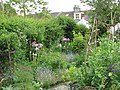 Garden House Brighton - Flickr - peganum (3).jpg