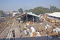 Gare-New-Delhi-Marchandises-1.JPG