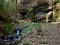 Gelobtbachtal, údolí Klopotského potoka - panoramio (19).jpg