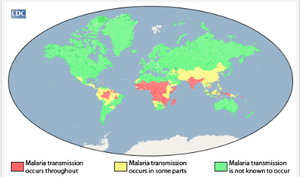 Plasmodium malariae - Geographical areas of malaria transmission