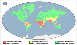 Plasmodium malariae - Geographical areas of malaria transmission