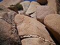 Geologic formations at Skull Rock (29074785855).jpg