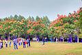 Gfp-china-nanjing-trees-blooming-in-nanjing.jpg