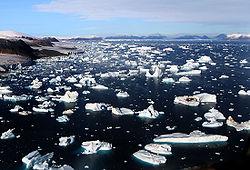 definition of iceberg