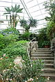 Glass house view - Brooklyn Botanic Garden - Brooklyn, NY - DSC08178.JPG