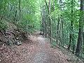 Gorges de Zadiel (agost 2012) - panoramio (3).jpg