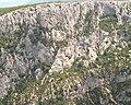 Gorges du Verdon I79124.jpg