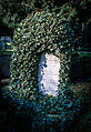 Gpez jansssen grave 2016.jpg