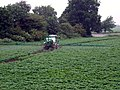 Green Farming - geograph.org.uk - 461436.jpg