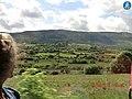 Green fields in Drom West - panoramio.jpg