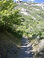 Grove Creek Trail in September - panoramio.jpg