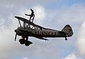 Guinot wing-walker (1392283757).jpg