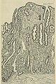 Gynecology (1916) (14592113430).jpg