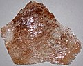 Gypsum (Moenkopi Formation, Lower Triassic; Route 9 roadcut between Hurricane & Rockville, Utah, USA) 5.jpg