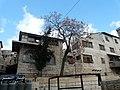 Häuser in der Altstadt (3457247162).jpg