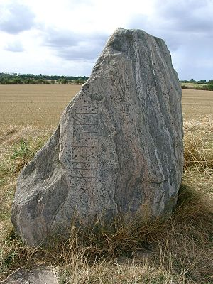The Hærulf Runestone from the southern part of...