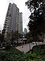 HK SW 上環 Sheung Wan 堅巷花園 Caine Lane Garden February 2020 SS2 03.jpg