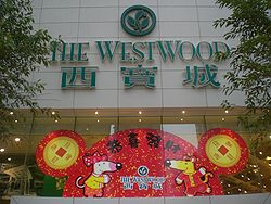 HK Sai Ying Pun The Westwood Lunar New Year Maisy.JPG