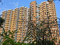 HK Wong Tai Sin 摩士公園 Morse Park No3 view residential building facade May-2013.JPG