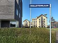 Hallsteinlaan 20190324 134223911 HDR.jpg