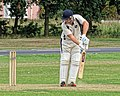 Hatfield Heath CC v. Thorley CC on Hatfield Heath village green, Essex, England 13.jpg