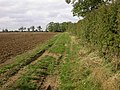 Headland Footpath through a Ploughed Field - geograph.org.uk - 236653.jpg