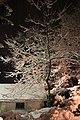 Heavy Snow event in Johnstown region - panoramio (20).jpg