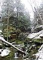Hemlock Falls - panoramio (1).jpg