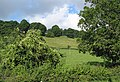 Hillside farmland near Barrel Farm - geograph.org.uk - 522456.jpg