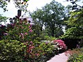 Hillwood Gardens in May (17318991523).jpg
