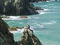Holywell Bay - panoramio - hilaris.jpg
