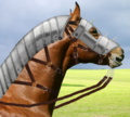 Horse light armoured head.png