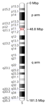 Map of Chromosome 5