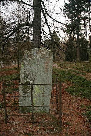 Hunter's Hill Stone - Rear of Hunter's Hill stone, showing incised symbols