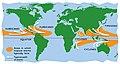 Hurricanes, cyclones, and typhoons.jpg