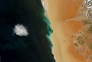 Hydrogen sulfide - A hydrogen sulfide bloom (green) stretching for about 150km along the coast of Namibia. As oxygen-poor water reaches the coast, bacteria in the organic-matter rich sediment produce hydrogen sulfide which is toxic to fish. (The image is taken from a bird's eye view.)