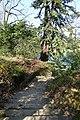 Iles du Lac Inférieur @ Bois de Boulogne @ Paris (32847579223).jpg