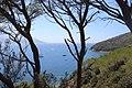Insel Elba.jpg