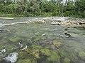 Isar River Garching.jpg