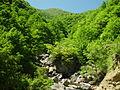 Itoshiro river 2002-06-13.jpg