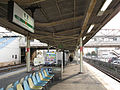 JREast-Tokaido-main-line-Kamonomiya-station-platform-20100331.jpg