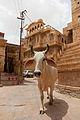 Jaisalmer fort20.jpg