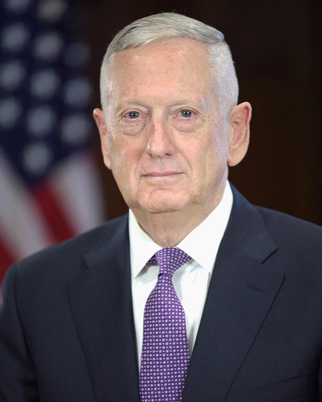 James Mattis official Transition portrait
